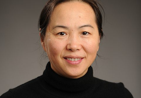 GSE Professor Recognized for Funded Research in Interdisciplinary Studies