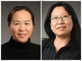 GSE Researchers Study Implications of Teaching Supports for Dual Language Educators
